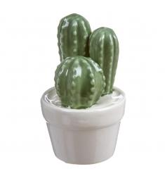 Maceta cactus porcelana 12x5,5cm.