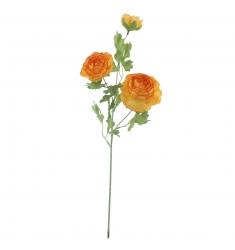 Ranunculus NARANJA