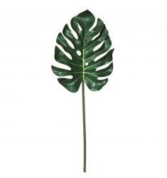 Split philo verde
