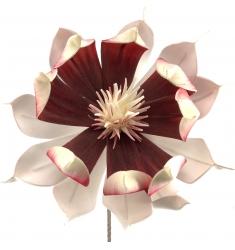 Magnolia Foam