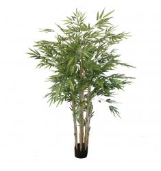 Bambú 1,80cm. con maceta