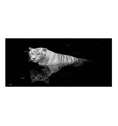 Cuadro alto brillo ANIMALES 45 -50x150cm.