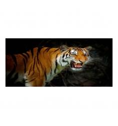 Cuadro alto brillo ANIMALES 11- 60x120cm.