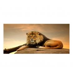Cuadro alto brillo ANIMALES 2 -50x150cm.