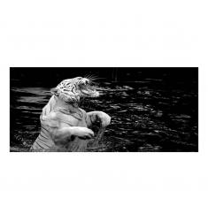 Cuadro alto brillo ANIMALES 15-50x150cm.